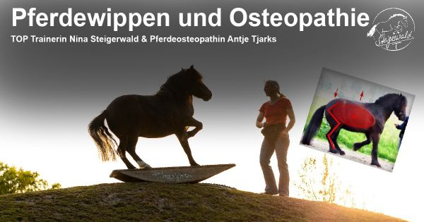 Horse rockers & osteopathy