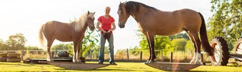 Nina Steigerwald and her horses