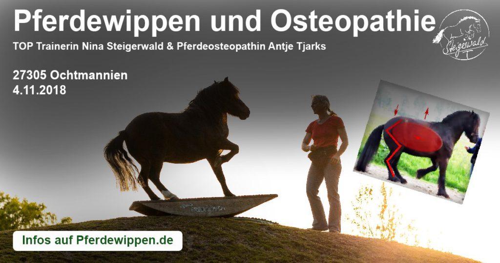 Pferdewippen meets Osteopathie