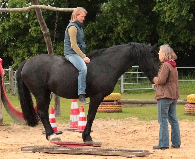 Frieda mit Reiter auf der Zweibeinwippe