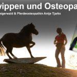 Pferdewippen & Osteopathie