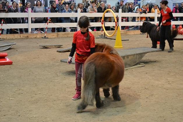Alessa und Jonny auf der Pferd und Jagd