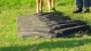 Treckerprofil für Horse Agility