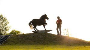 Steigerwald.True Horse Agility