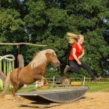 Pferdetrainerin Linda Veltkamp