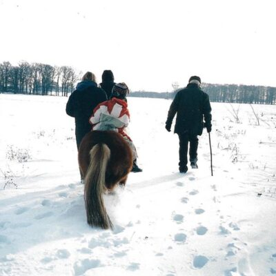 Amadeus riding in winter