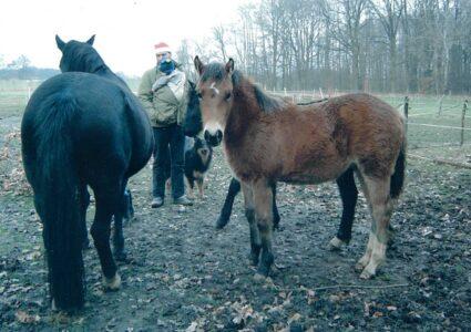 Großfamilie Steigerwald trifft sich