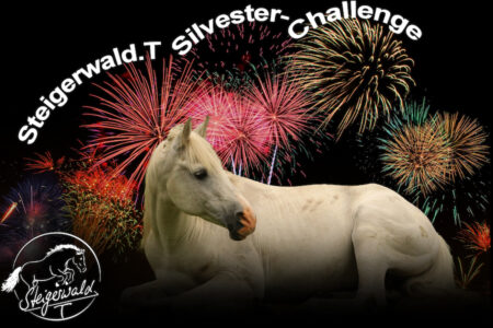 Silvester-Challenge 2019