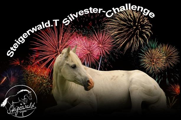 Steigerwald.T Silvester-Challenge