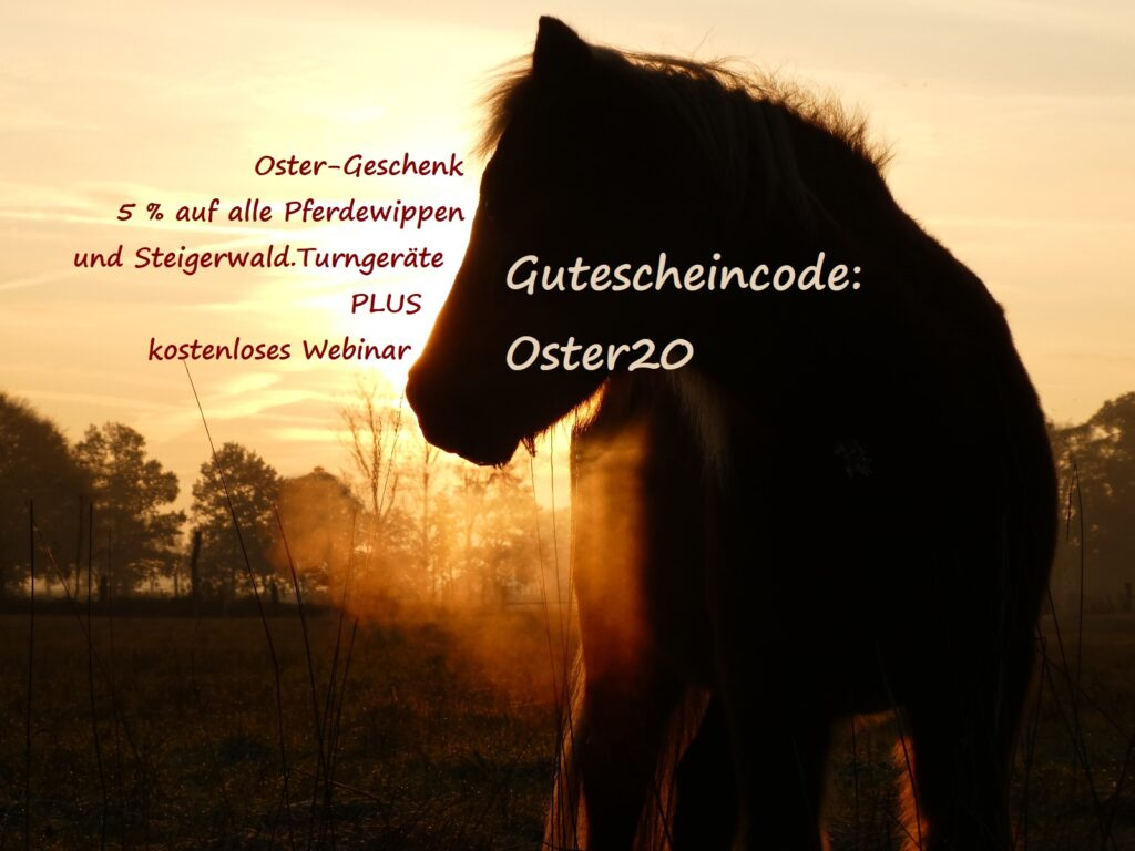 Ostergeschenk Pferdewippen-Rabatt